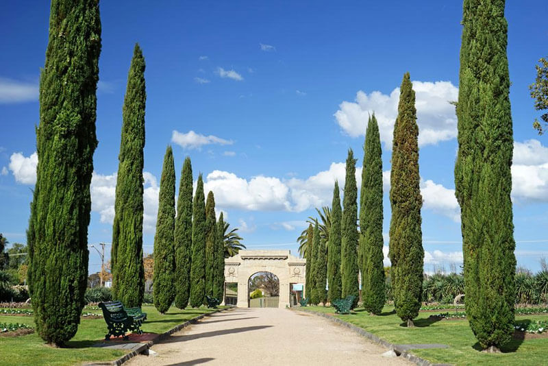 Blue sky with tall trees and archway at Bendigo Gardens